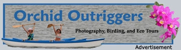 Located in Los Osos on the central coast of California, Orchid Outriggers offers custom photography, birding, and estuary tours in hand-crafted 17' outrigger canoes with experienced guides... an opportunity to see and experience Morro Bay in a whole new way!
